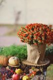 Flowers and pumpkin Royalty Free Stock Photography