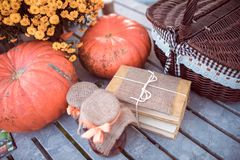 Flowers, pumpkins, jams and books Stock Photography