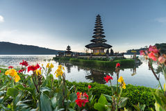 Flowers Pura Ulun Danu temple Royalty Free Stock Photos