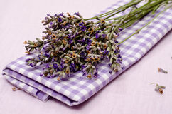 Flowers of purple lavender stock photography