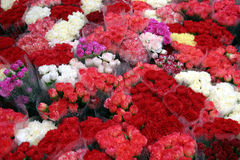 Flowers in the rain. Flowers on a market stall in the rain Royalty Free Stock Photos