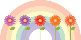 Flowers with a Rainbow Background Stock Photo