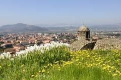 Flowers on ramparts at Sarzanello fortress, Sarzana Stock Image