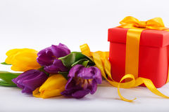 Flowers and red gift box. Royalty Free Stock Photography
