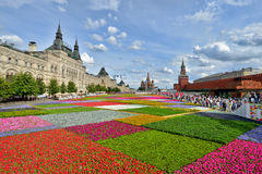 Flowers in Red Square Royalty Free Stock Images
