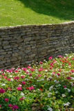Flowers and retaining wall brick. Flowers, green grass and retaining wall gray brick stock images