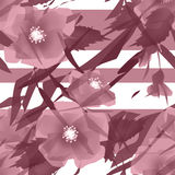 Flowers retro seamless pattern on white background Royalty Free Stock Photography