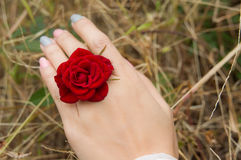 Flowers ring. On A Woman Hand Stock Image
