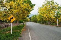 Flowers by road. In thailand Royalty Free Stock Image