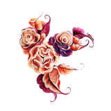 Flowers rose one stroke painting Stock Photography