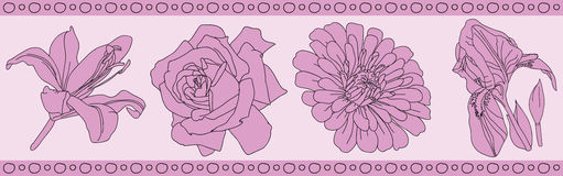 Flowers rose pattern. Iris and lily, illustration vector illustration