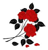 Flowers rose, silhouette Royalty Free Stock Images