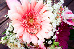 Flowers rose on wooden surface. Royalty Free Stock Images