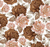 Flowers. Roses. Beautiful background. Stock Images