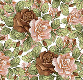 Flowers. Roses. Beautiful background. Royalty Free Stock Image