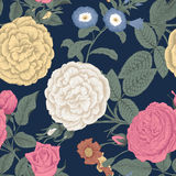 Flowers. Roses. Seamless vector background. Vintage illustration Royalty Free Stock Image