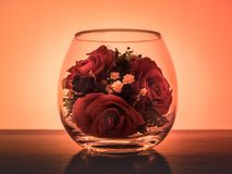 Flowers Roses in a vacuum. Jar of glass Royalty Free Stock Photography