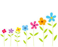 Flowers row Royalty Free Stock Photography