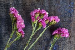 Flowers on rustic background Royalty Free Stock Photography