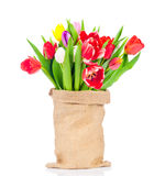 Flowers in the sack Stock Image