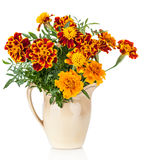 Flowers of Saffron (Tagetes) bush - used as a spice and medicinal plant- in ceramic jug Royalty Free Stock Image