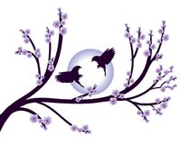 Flowers sakura spring violet blossoms and bird isolated Royalty Free Stock Image