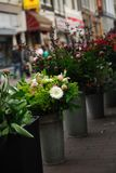 Flowers for sale in Amsterdam Stock Photos