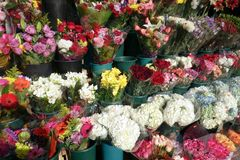Flowers for sale. Bunches of flowers displayed in buckets, for sale at a street market royalty free stock photo