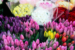 Flowers for sale at the florist Stock Photo