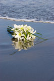 Flowers on the sand. Brides Bouquet of Flowers sitting in the wet sand Stock Image