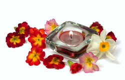 Flowers and scented candle. Isolated on white Royalty Free Stock Photography