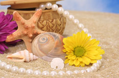 Flowers and Sea Shells Royalty Free Stock Photos