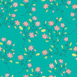Flowers seamless background Stock Images