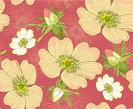 Flowers  seamless background Stock Photos