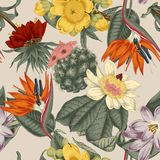 Flowers. Seamless  background.  Exotica.  Tropics. Flowers. Seamless  background. Vintage illustration. Exotica. rnTropics. Vegetable pattern. Botanical theme Stock Images