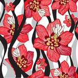 Flowers seamless background.  Floral line texture. Stock Images