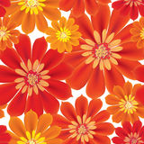 Flowers Seamless Background. Floral Seamless Texture With Flower Stock Photos