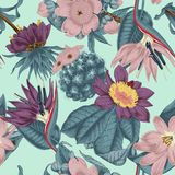 Flowers. Seamless  background.  Exotica.  Tropics. Flowers. Seamless  background. Vintage illustration. Tropics. Vegetable pattern. Botanical theme Royalty Free Stock Images