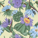 Flowers. Seamless  background.  Exotica.  Tropics. Flowers. Seamless  background. Vintage illustration. Tropics. Vegetable pattern. Botanical theme Stock Photography