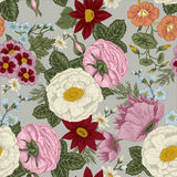 Flowers. Seamless  background. Vintage illustration. Vector seamless background with flowers. Vintage illustration. Figure can be used for application to the Stock Images
