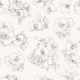 Flowers seamless pattern background line illustration orchids. Floral design elements. Seamless floral pattern with orchids, brown line on white. Hand drawn Stock Images