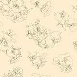 Flowers seamless pattern background line illustration orchids. Floral design elements. Seamless floral pattern with orchids, green line on beige. Hand drawn Stock Photos