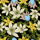 Flowers. Seamless vector background. Flower texture. Floral pattern. Vintage. Classic. Botany. Royalty Free Stock Image