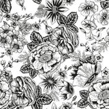 Flowers. Seamless vector background. Vintage illustration. Vector seamless background with floral pattern. The image in vintage style Royalty Free Stock Image