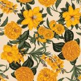Flowers. Seamless vector background. Vintage illustration. Vintage postcard. Vegetable pattern. Botanical theme Stock Photography