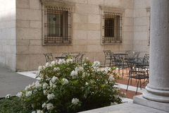 Flowers and Seating in Boston Library courtyard. Large white flowers next to a column in the Boston Library courtyard. Table and chairs are seen basking in the Royalty Free Stock Photo