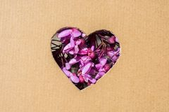 Flowers seen through heart shape. Cut out of cardboard Stock Photography