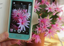 Flowers selfie Stock Images