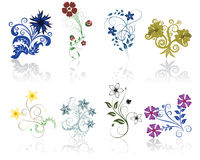 Flowers set. Set of different flower and leaves for self-supporting making floral ornate Royalty Free Stock Image