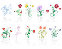 Flowers set. Set of different flower and leaves for self-supporting making floral ornate Stock Image